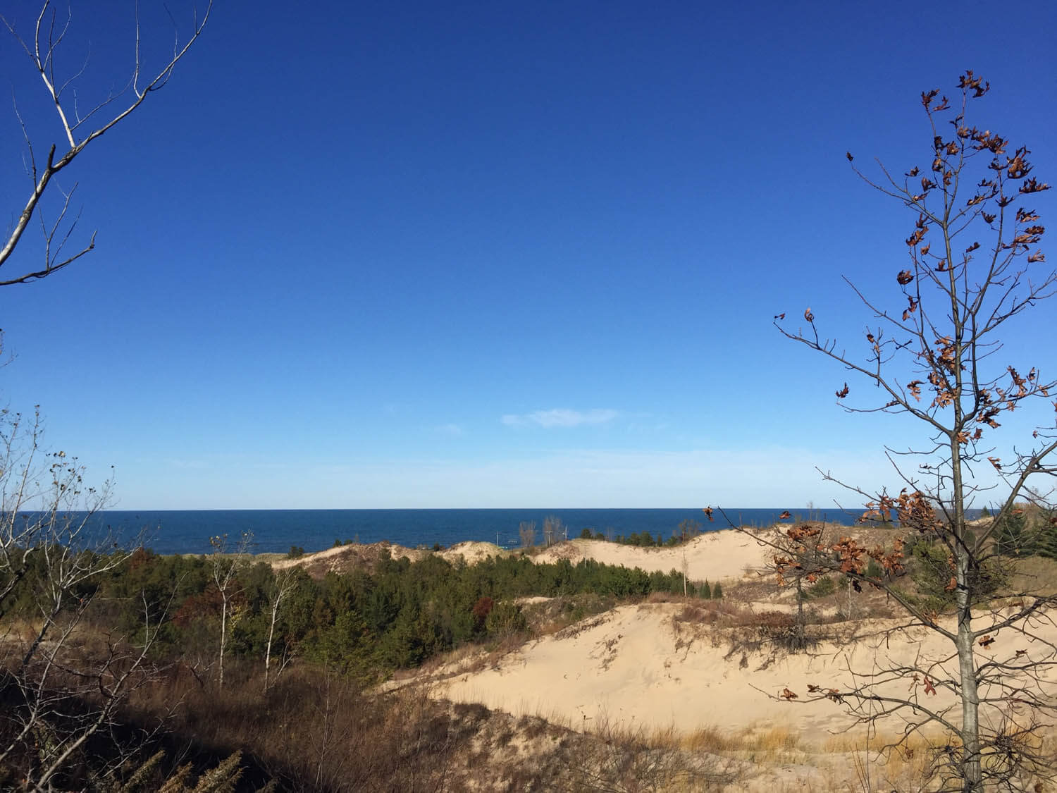 View of the Indiana Dunes with the blue waters of Lake Michigan in the background.